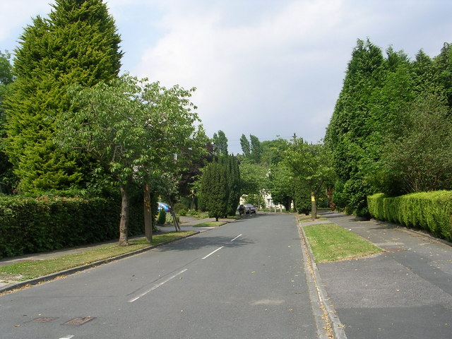 Yew Tree Avenue - Allerton Road