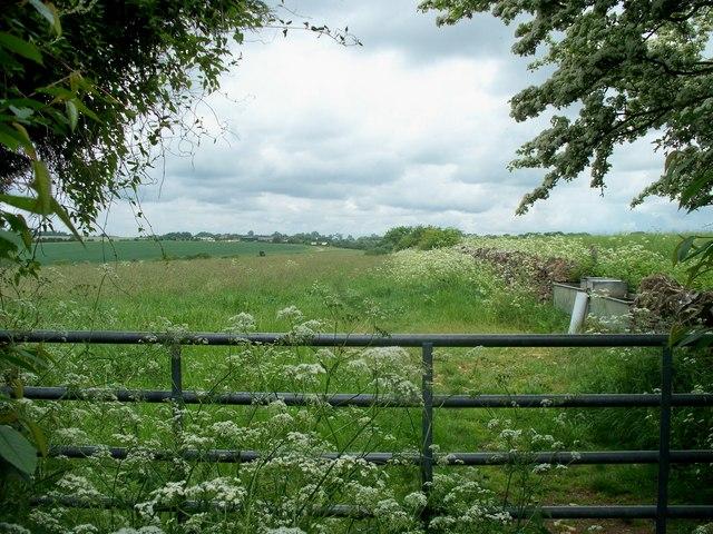 Harford Hill bridleway