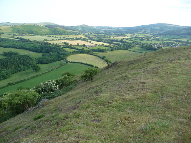 The south eastern slopes of Earl's Hill in June