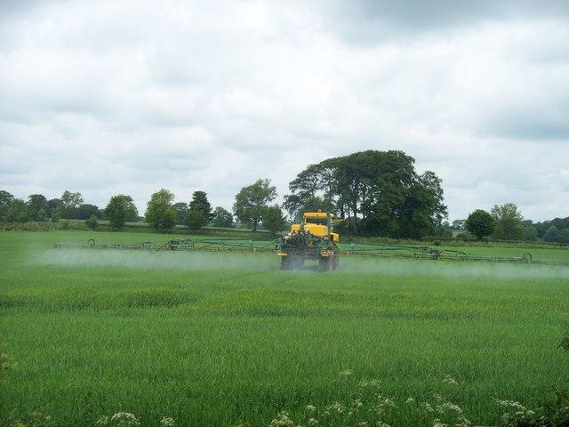 Spraying the crops