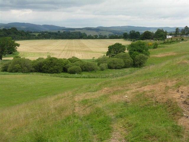 Fields in Annandale