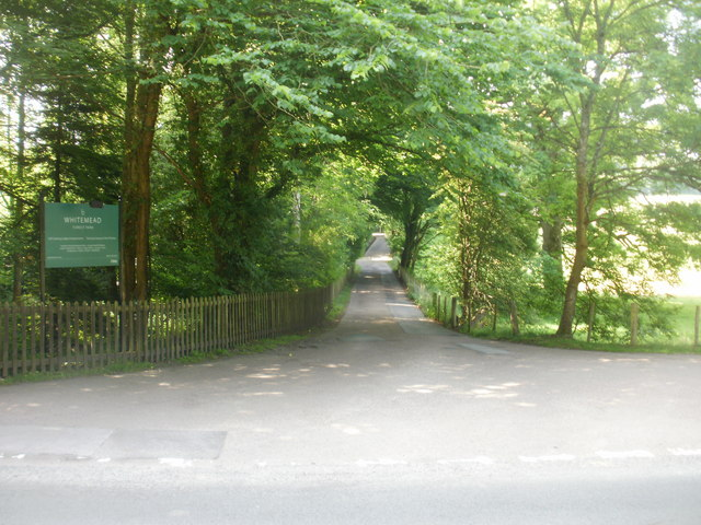 Road to Whitemead
