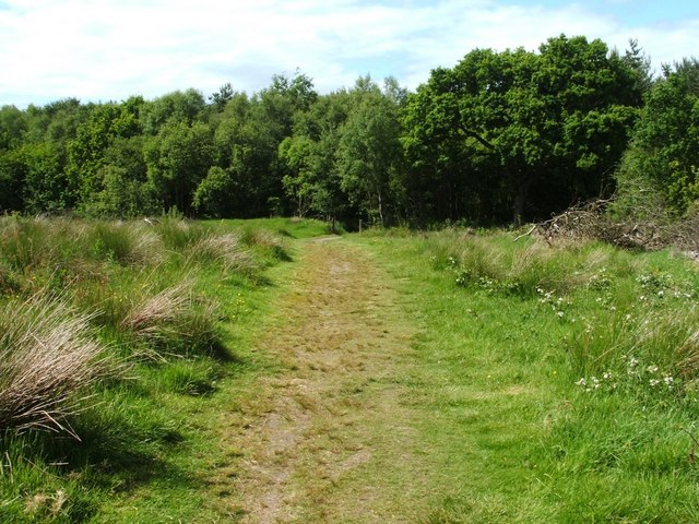 Footpath to Chacefield Wood