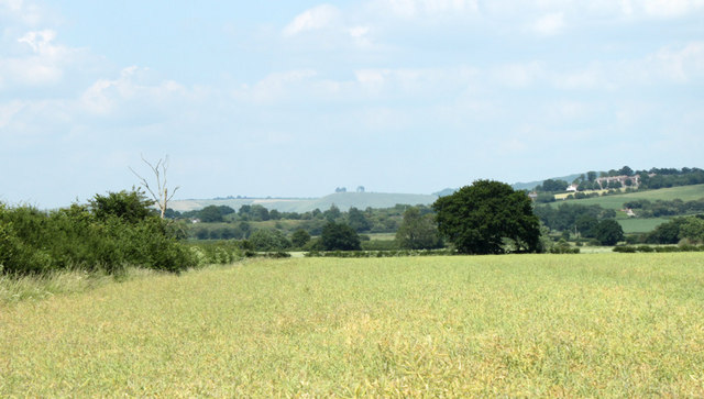 2010 : East of north from Hay Lane