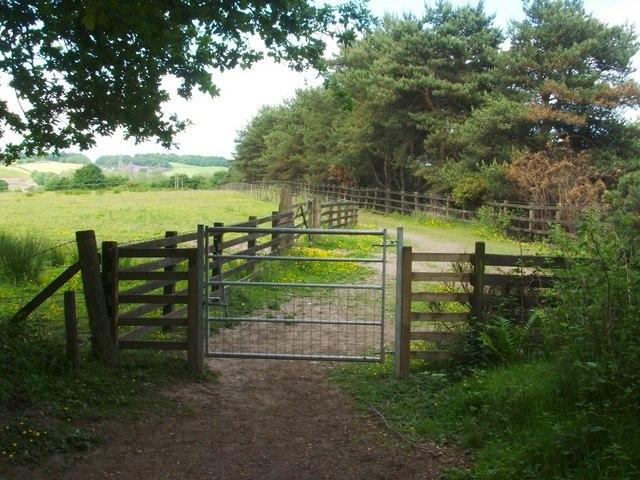Footpath leaving Chacefield Wood