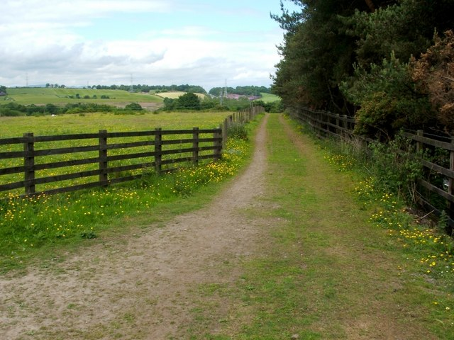 Track leading to Old Railway Line Path