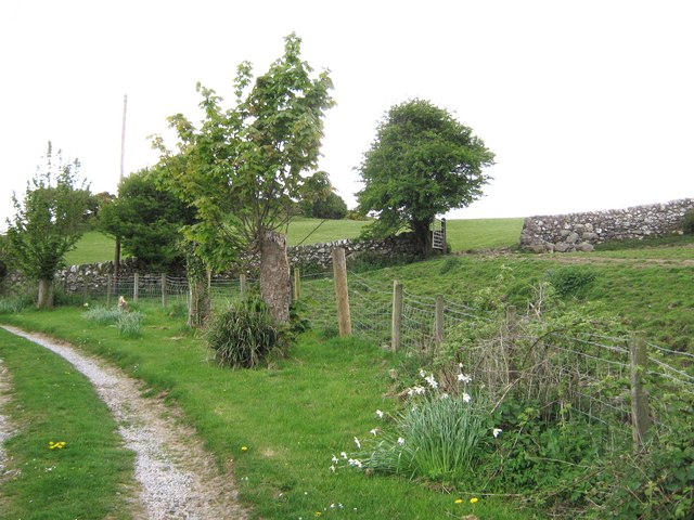 A fence separating field and track