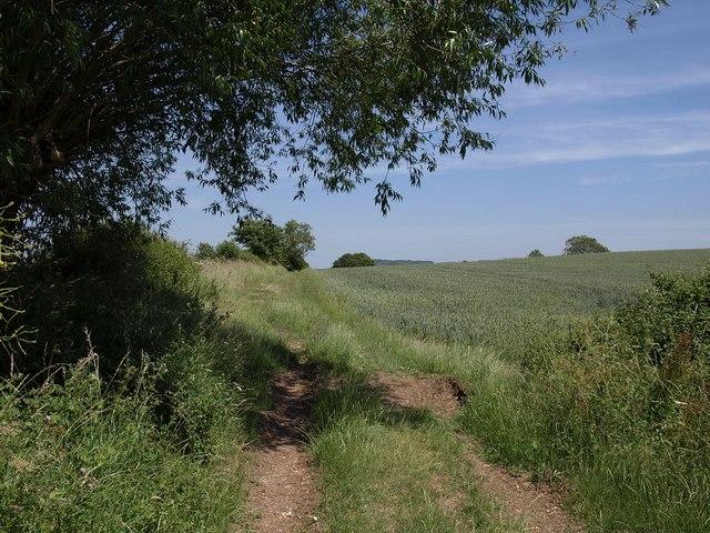 Footpath near Woolridge