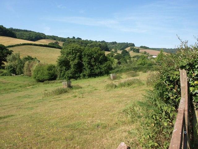 Upper Aller Valley looking towards Southwood Farm