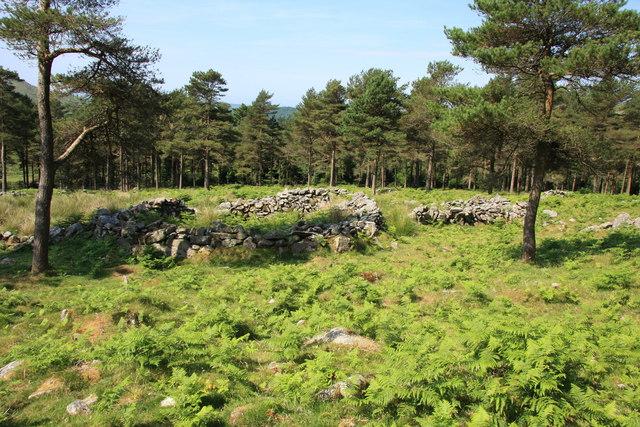Circular enclosure, Raddick Plantation