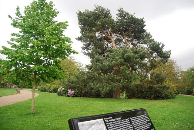 The American Garden, Dulwich Park