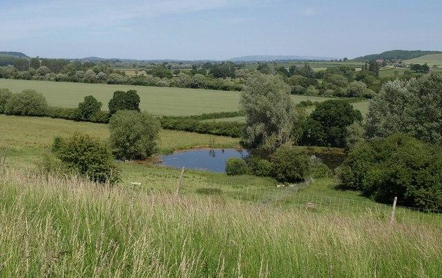 Pond near the Severn