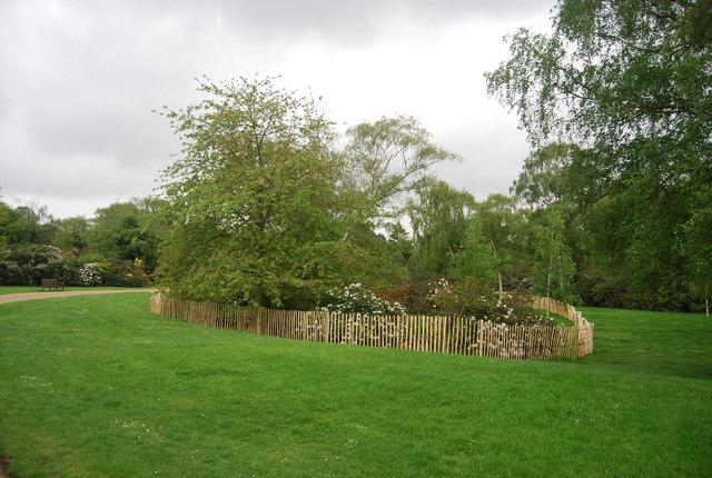 American Garden, Dulwich Park