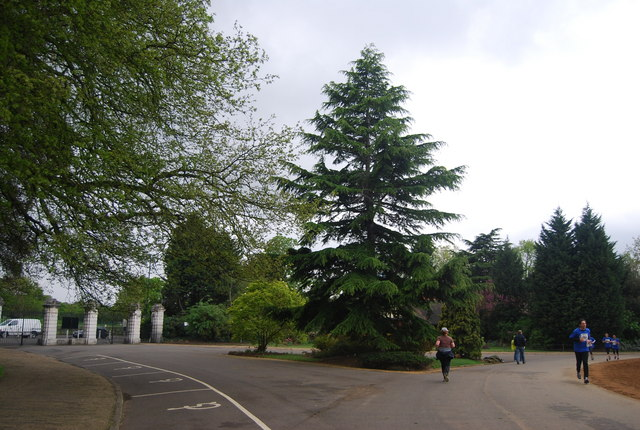 Carriage Drive, Dulwich Park