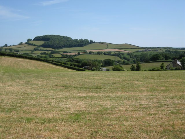 Mown field above Goosey