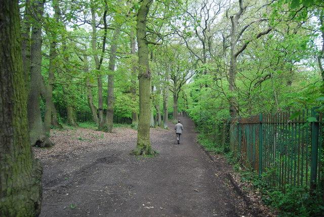 Cox's Walk