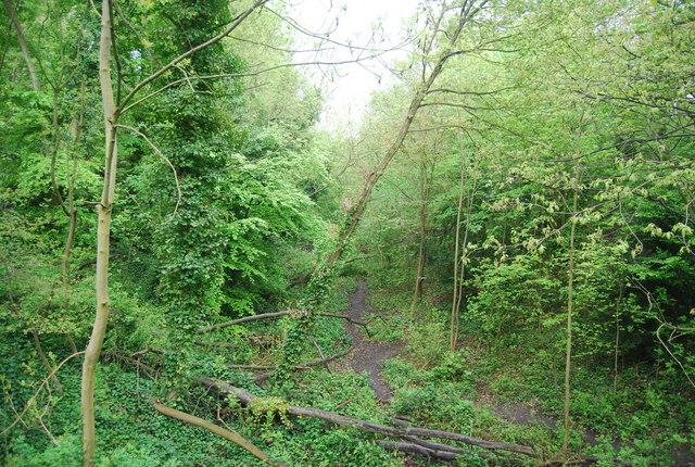 Dismantled railway, Sydenham Hill