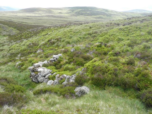 Ruin on a moor