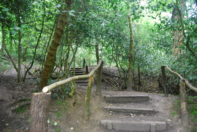 Footpath steps, Sydenham Hill Wood Nature Reserve