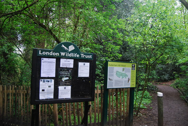Information at the entrance to Sydenham Hill Wood