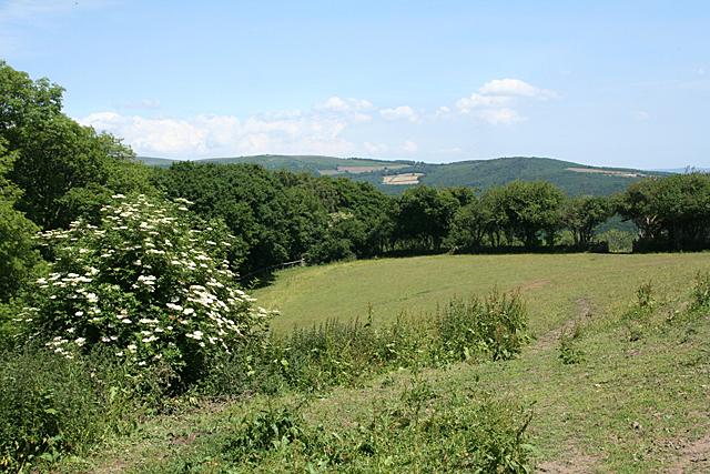Holne: near Fore Stoke