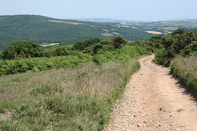 Holne: bridleway to Fore Stoke