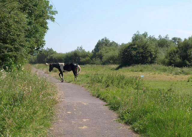 Cycle path by the Severn
