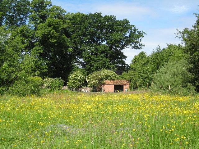 Inveresk Lodge Meadow