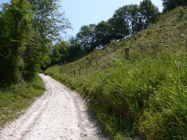 Bridleway above the woods on Didling Hill