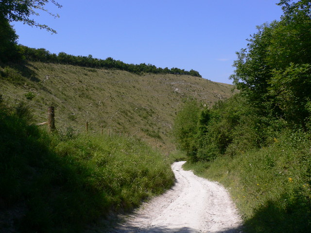 Looking down the bridleway on Didling Hill