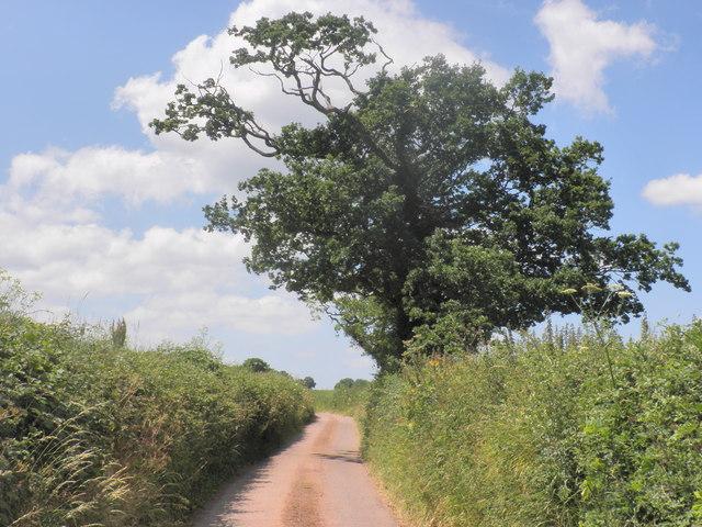 Minor road, forming part of Devonshire Heartland Way