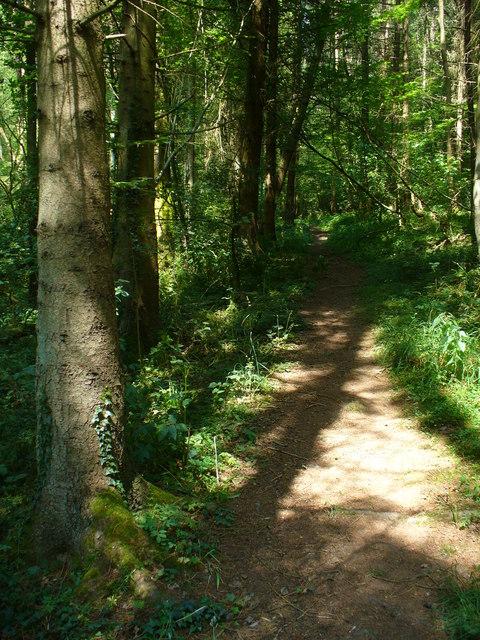 Path to Six Acre Pond