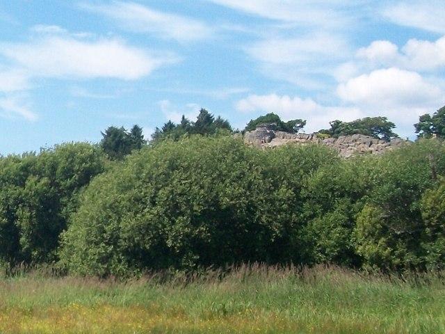 View across the Rhyd-hir floodplain towards the Garreg-fach outcrop