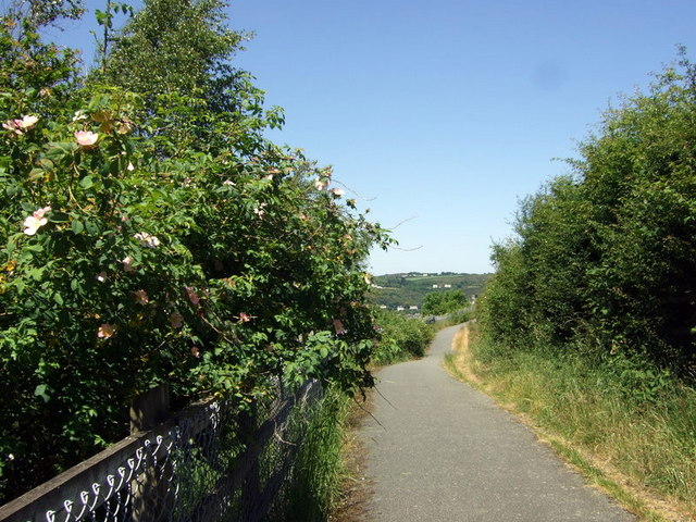 Cyclepath beside the by-pass