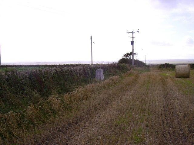 Hillhead Farm triangulation pillar