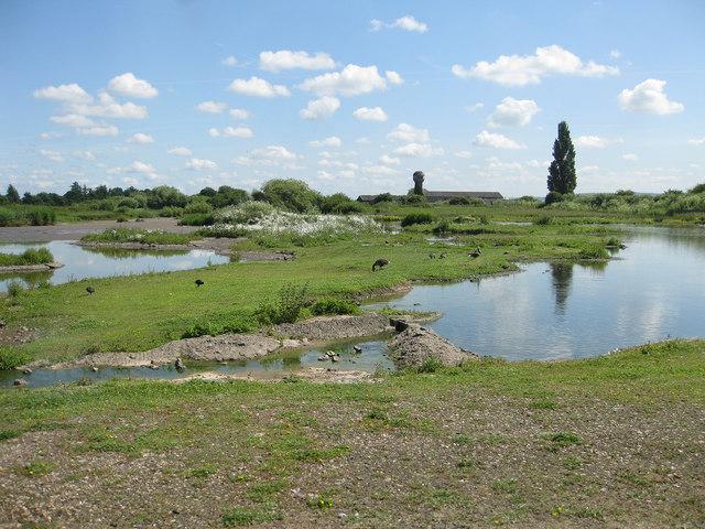 Northeast view over the wetlands