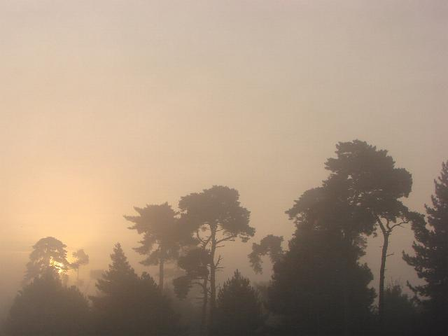 The glow of the rising sun through the fog