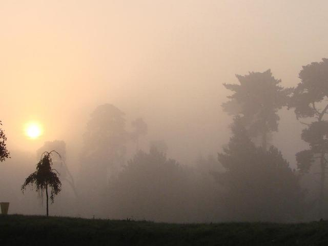 Sunrise on a foggy morning in August