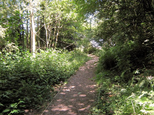 Coming out of Coppice Wood