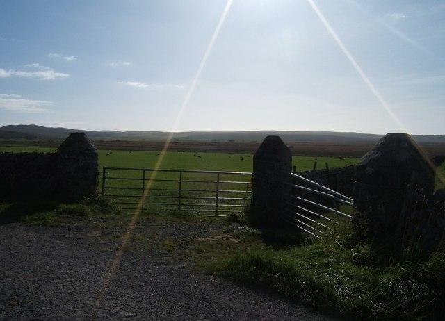 Gateposts, Leorin