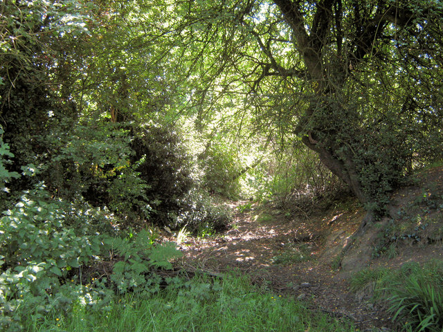 Possible remains of an old ditch