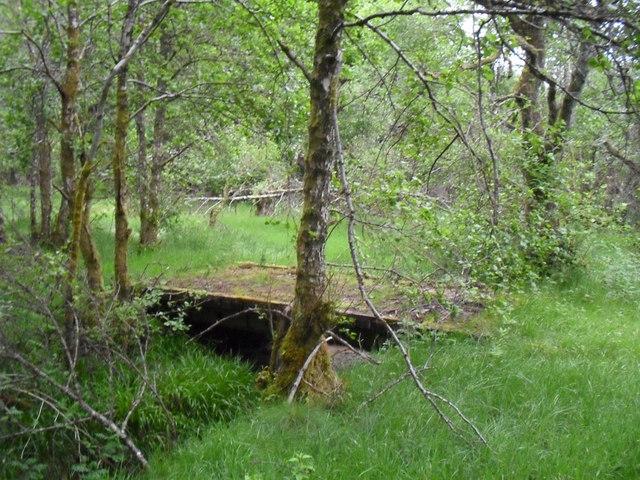 Old bridge in woods behind Castle Leod