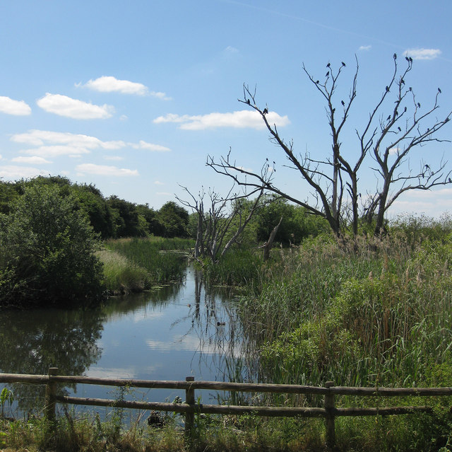 Wetland from the Kingfisher Hide, early summer view