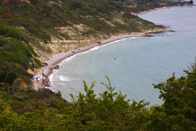 Whitecliff Bay from Culver Down