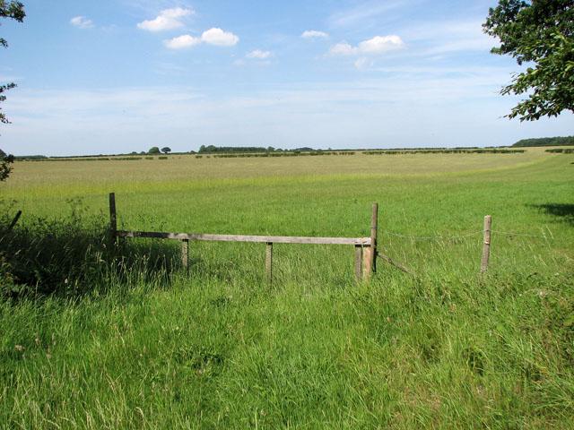 Hay meadow west of Bunker's Hill