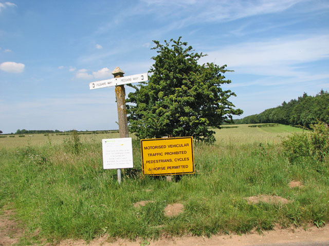Fingerpost on the Peddars Way