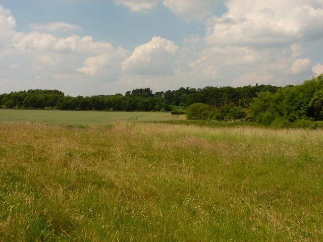 Farmland south of Weston Park estate