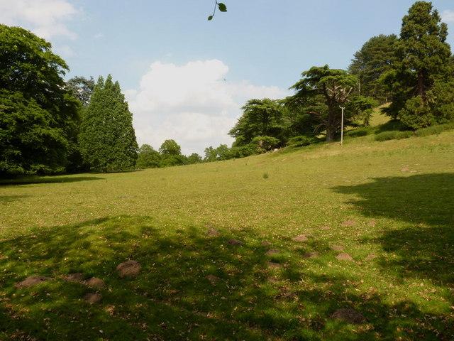 Parkland in Weston Park