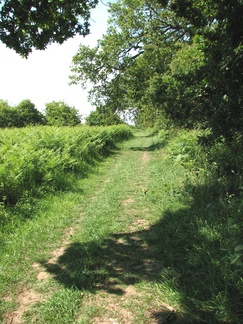 The Peddars Way long distance footpath