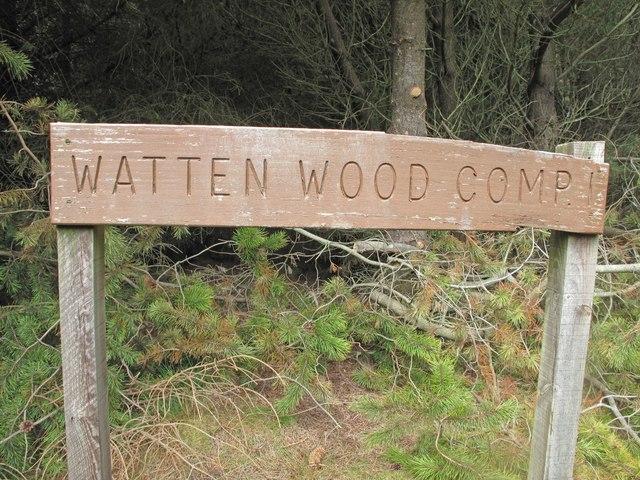 Watten Wood